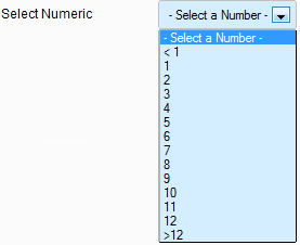 Select_numeric_optional_settings