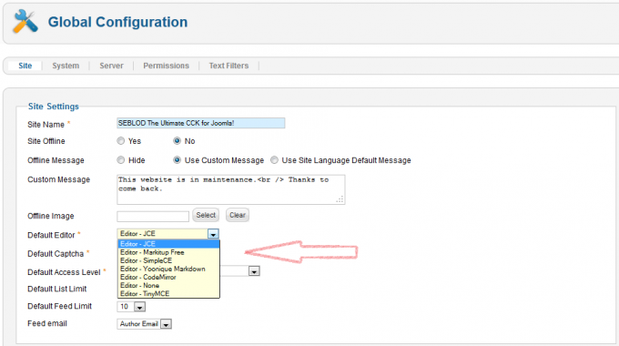 default_editor_site_configuration