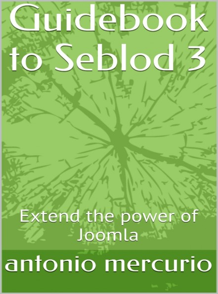 Guidebook to Seblod 3